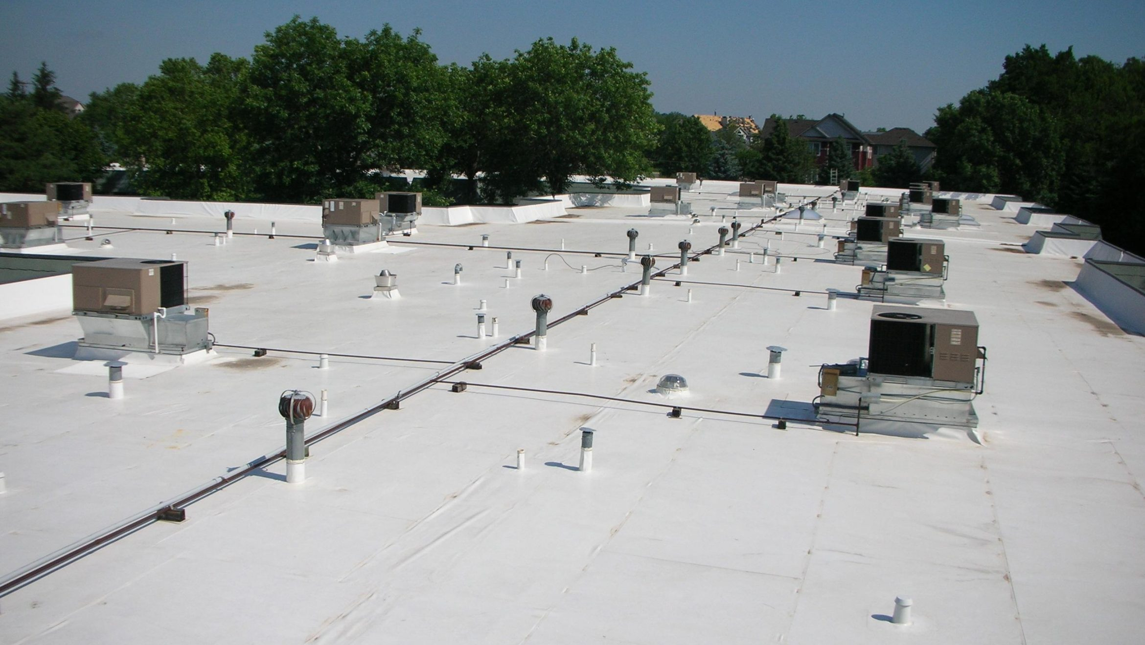 Pros and Cons of Having Trees Near a Commercial Flat Roof ...