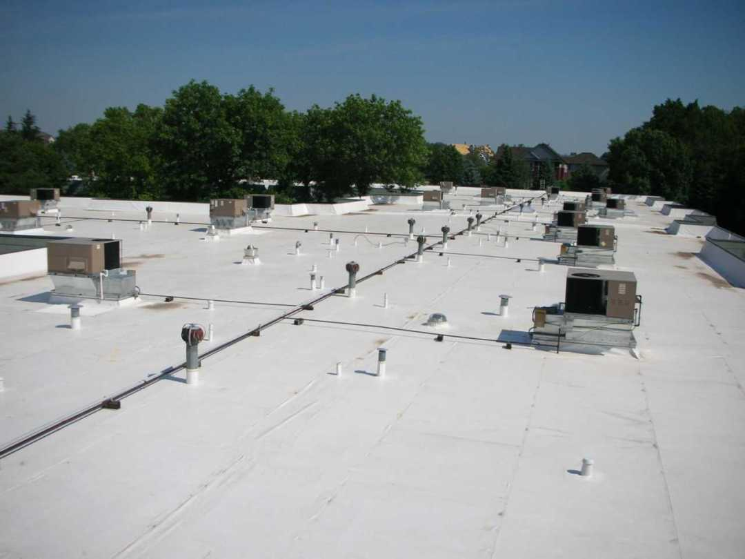 Flat Roof Hail Damage : Pros and cons of having trees near a commercial flat roof