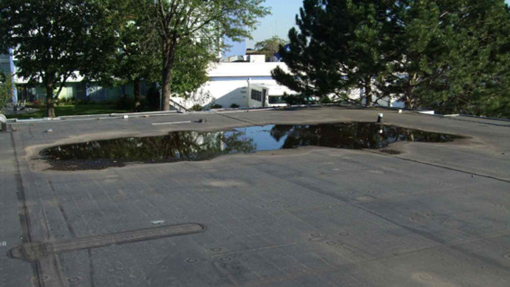 6 Signs That Your Flat Roof Has a Low Spot