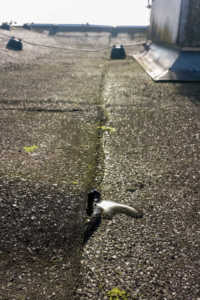 damaged membranes from ponding can allow flat roofs to leak water.