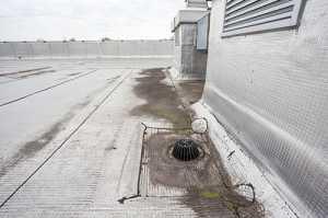 flat roof detritus